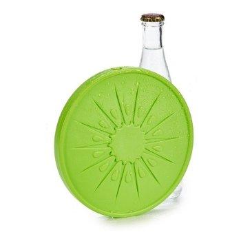 Acumulador de Frío Plástico (17,5 x 1,5 x 17,5 cm) Verde
