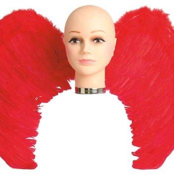 Alas con plumas
