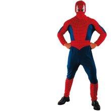 Hombre araña adulto