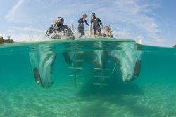 Curso de Buceo Open Water Diver ( Mallorca)