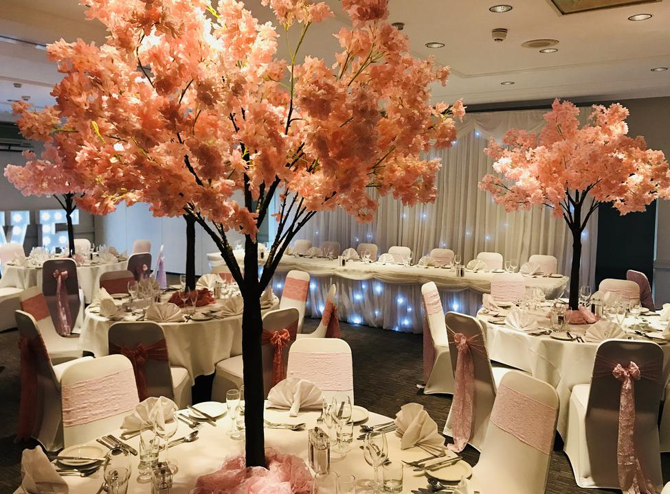 Sophie from Sophisticated shindigs has decorated the majority of the wedding that we have at the hotel. The work that she produces always leaves Brides & Groom's stunned and completely transforms our rooms into your perfect wedding bliss. I would highly recommend this business for any wedding decor.