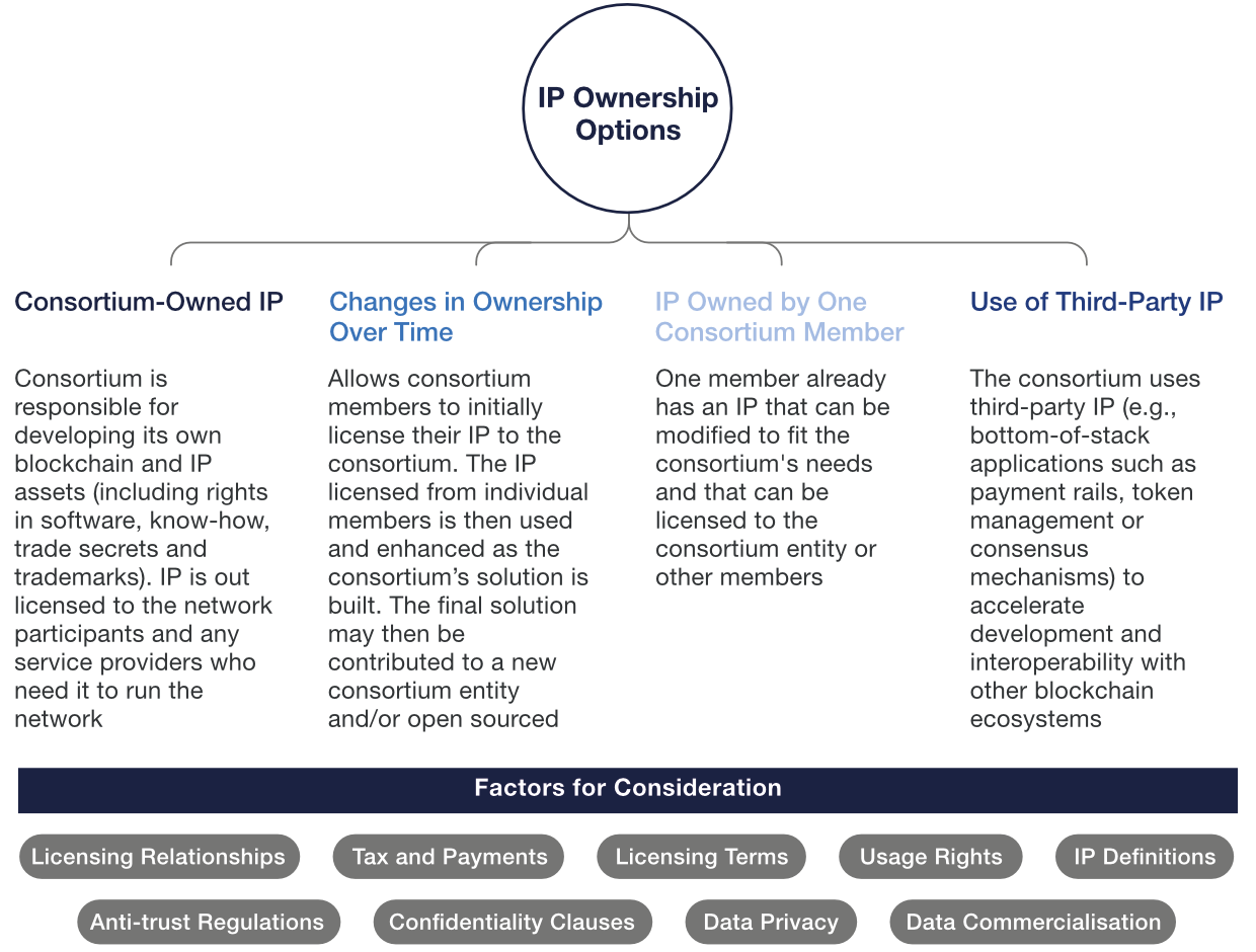 Overview of intellectual property ownership options