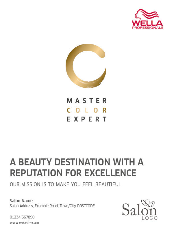 Master Color Expert Advert Front Preview