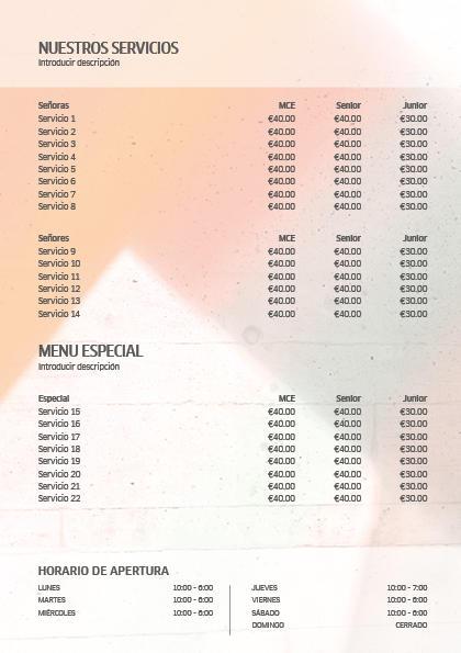 Wella Professionals SS18 Price List 2 Previsualización reverso