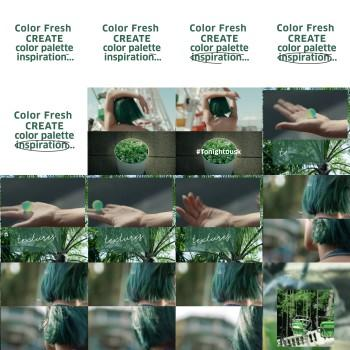 Color Fresh Create Instagram post 4