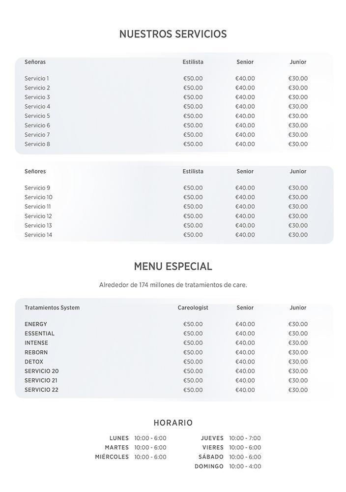 Lista de Precios System Professional Previsualización reverso