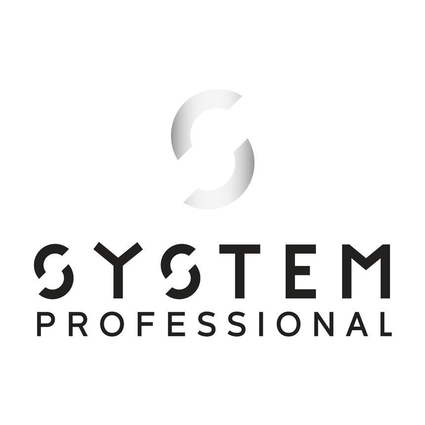System Professional Logo Grad