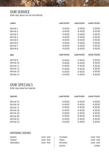 Koleston Perfect ME+ Price List 3 Back Preview