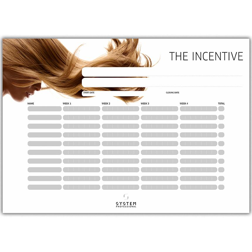 System Professional Stylist Incentive Chart Front Preview