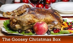 The Goosey Christmas Box