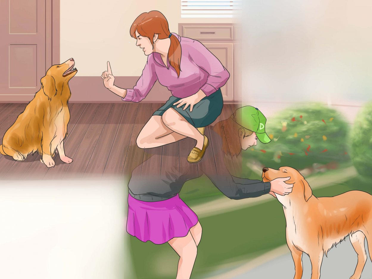 Work-With-Dominant-Dogs-Step-11.jpg