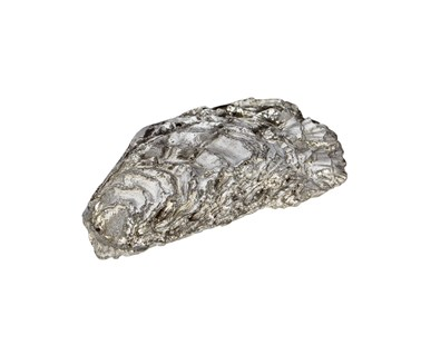 Cast Pewter Oyster Shell back ornament