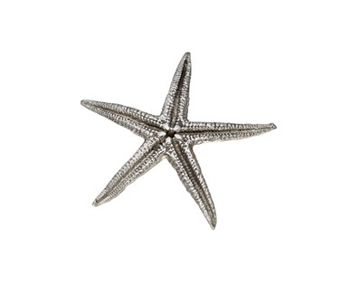Cast Pewter Baby Starfish ornament