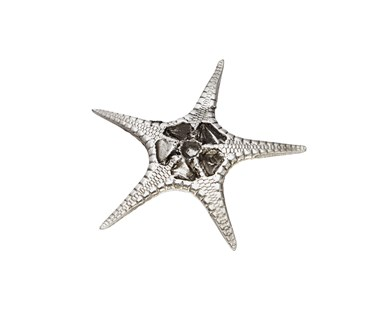 Cast Pewter Large Fancy Starfish ornament