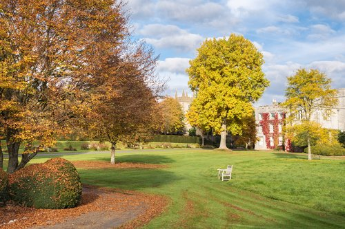 Discover Autumn at West Dean Gardens