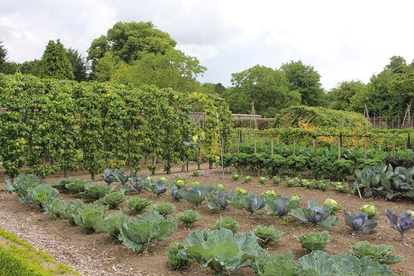 Kitchen Garden at West Dean West Sussex