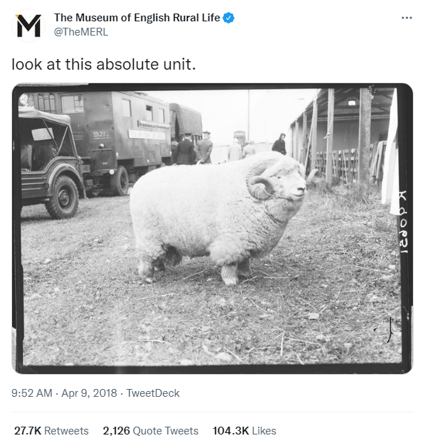 MERL Absolute Unit