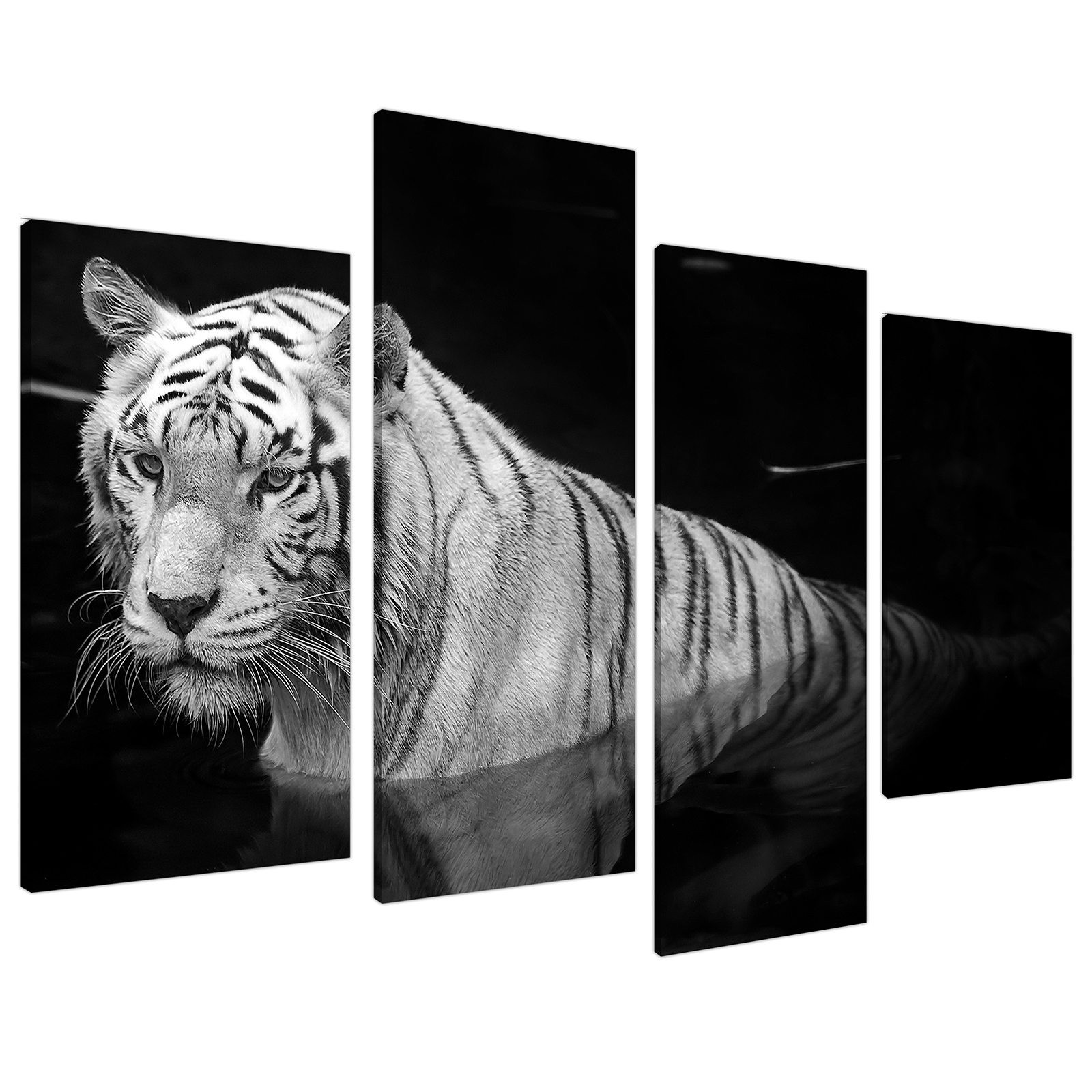 An image of Black White Bengal Tiger Water Canvas - Multi 4 Panel - 130cm - 4020