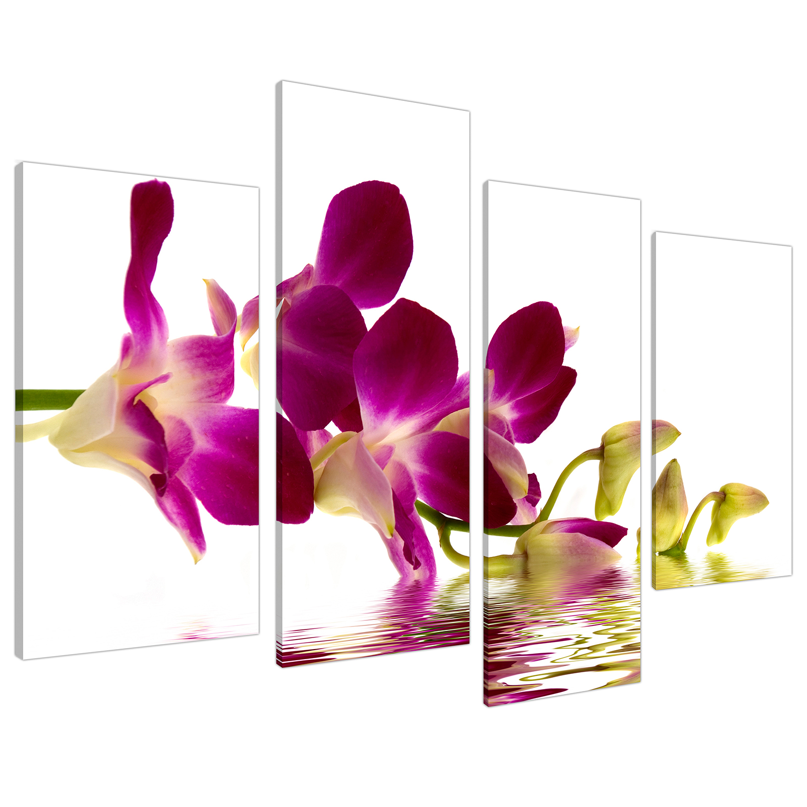 An image of Purple Green White Orchid Flower Floral Canvas - Split Set of 4 - 130cm - 4021
