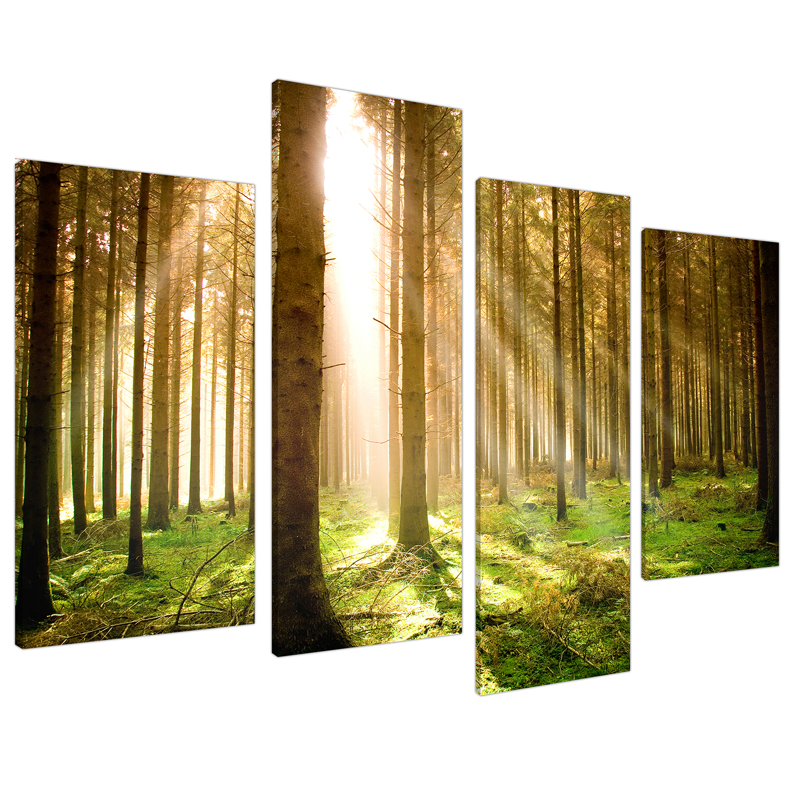 An image of Green Forest Woodland Sunlight Trees Canvas - Multi 4 Panel - 130cm - 4042