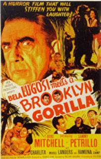 Bela Lugosi Meets a Brooklyn Gorilla Cover