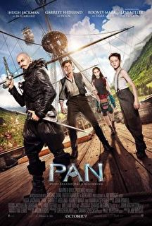 Pan Cover