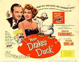 Mister Drake's Duck Cover