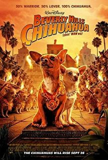 Beverly Hills Chihuahua Cover