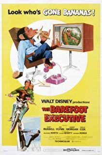 The Barefoot Executive Cover