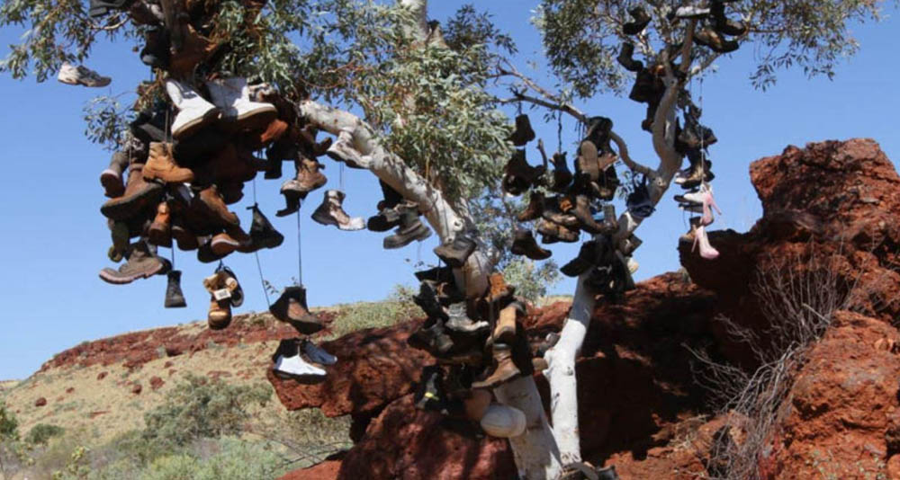 RioTinto Pannawonnica boot tree