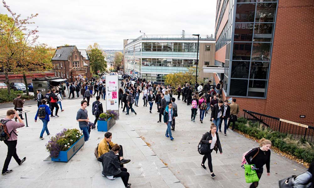 University of Sheffield recruits Race Equality Champions