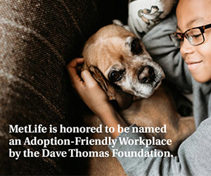 MetLife is named as an adoption friendly workplace