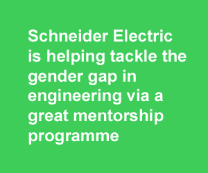 Schneider Electric mentorship programme with DIT
