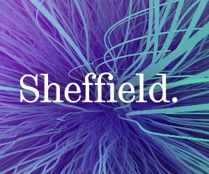 University of Sheffield seeks young STEM talent