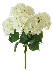 Lotus Silk Lg Mophead Hydrangea Bunch Cream 101059