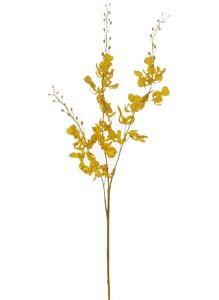 Lotus Silk Brazilian Dancing Orchid Yellow 105186