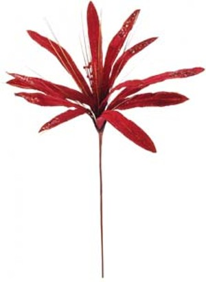 116135-single-red-phoenix-stem.jpg