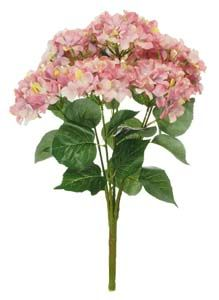 Lotus Silk Lg Mophead Hydrangea Bunch B.Pink 177059
