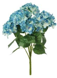 Lotus Silk Lg Mophead Hydrangea Bunch P.Blue 189059
