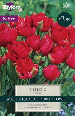 TULIP ESTATIC