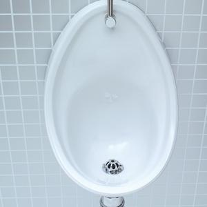 500mm-urinal-bowl