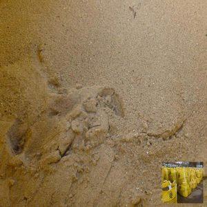 bulk-bag-of-washed-sand-image2.jpg