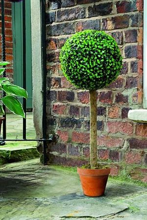 Gardman Topiary Ball Leaf Effect Tree 02816