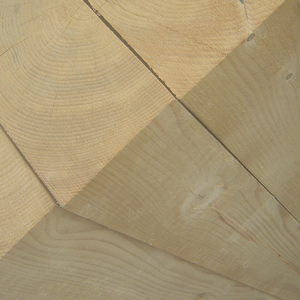 german-whitewood-rough-sawn-100x250mm-2-4m-6m-c16-c24-p