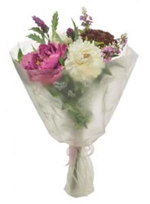 lotus-imports-ltd-bq-o-top-peony-corymb-magenta-ref-303117.jpg