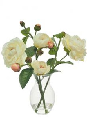 lotus-imports-ltd-complete-angelica-astra-cream-ref-501110.jpg