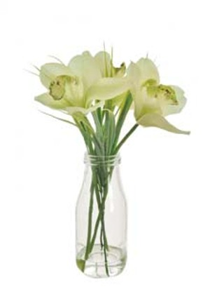 lotus-imports-ltd-complete-cymbid-round-bottle-pale-grn-ref-557134.jpg