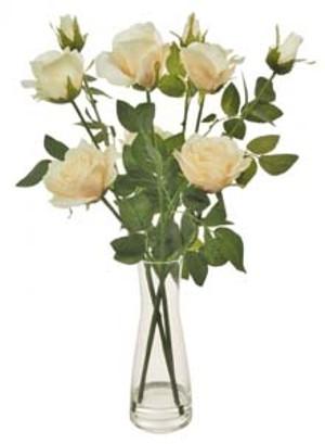lotus-imports-ltd-complete-serenity-beaker-cream-ref-501089.jpg