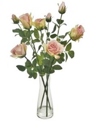 lotus-imports-ltd-complete-serenity-beaker-dusty-pink-ref-566089.jpg