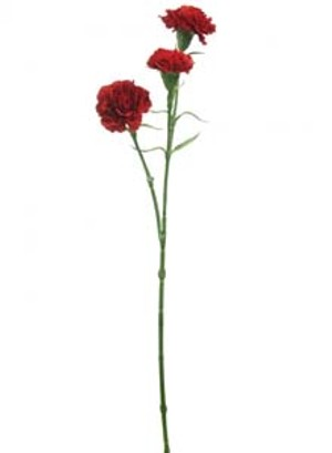 lotus-imports-ltd-silk-3head-carnation-stem-red-ref-149237.jpg